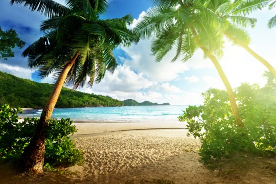 Private-Island-2.jpg