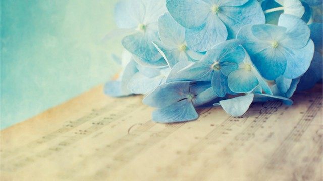 Ceremony music: what options do you have with your budget?