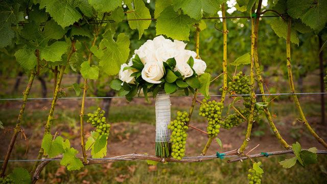 Wine merchants Corney & Barrow launch new online wedding hub