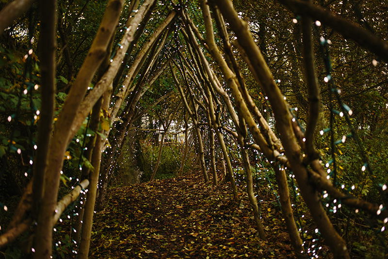 woodland fairy lights