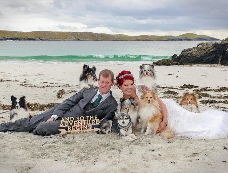 bride and groom on beach with dogs