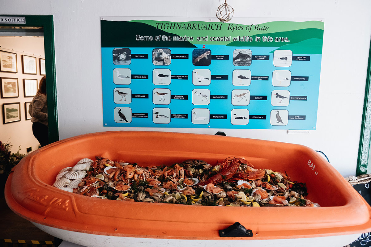 dinghy full of seafood