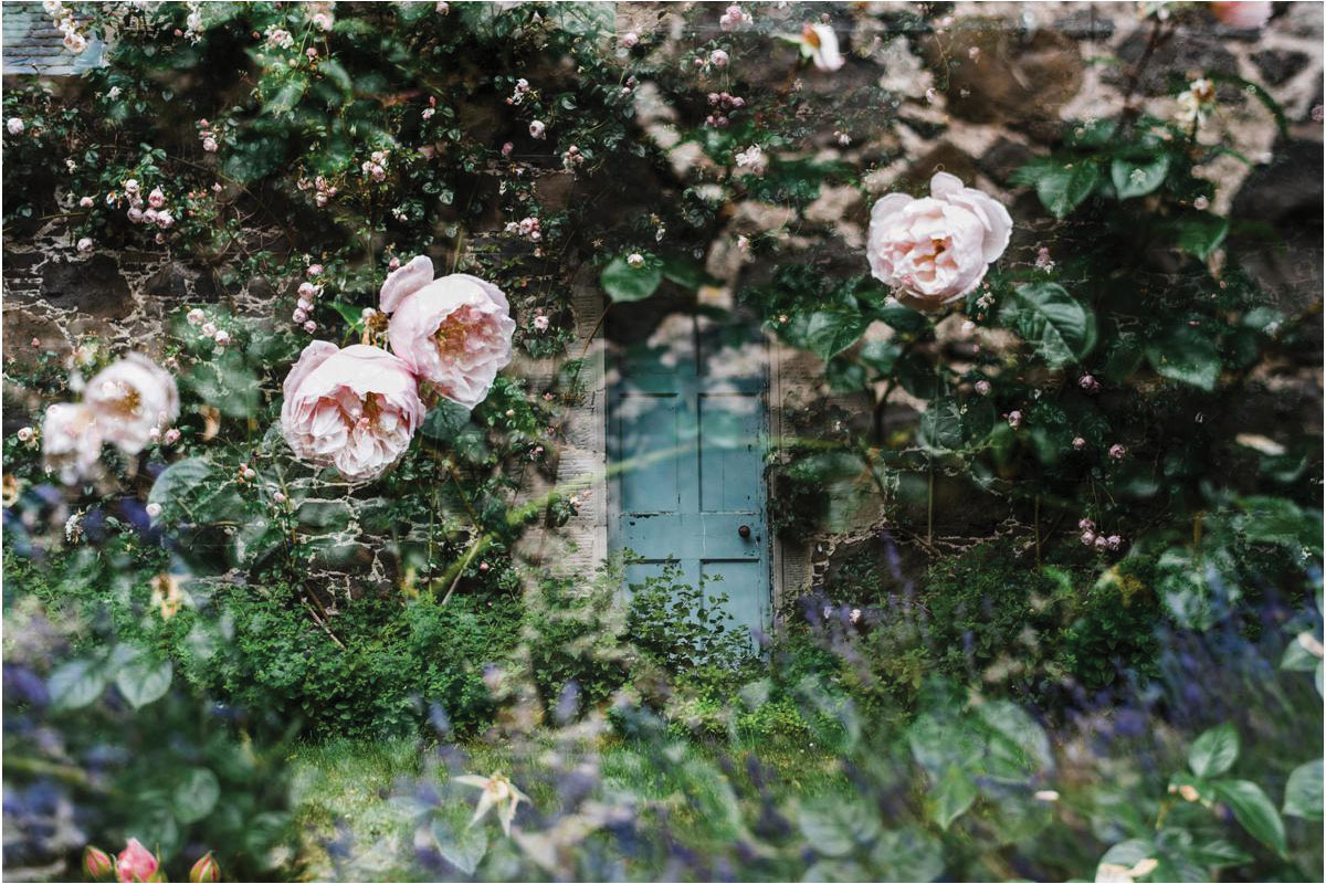 roses-in-the-garden-at-the-byre-at-inchyra