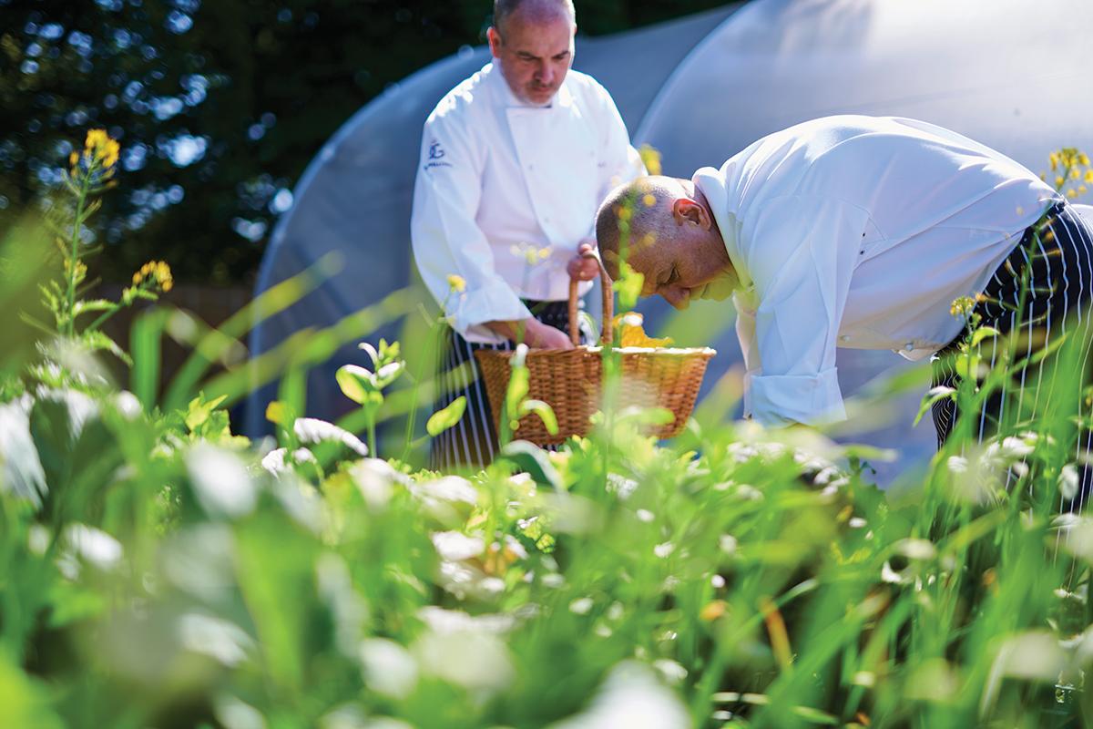 rufflets-Chef-Kitchen-Garden