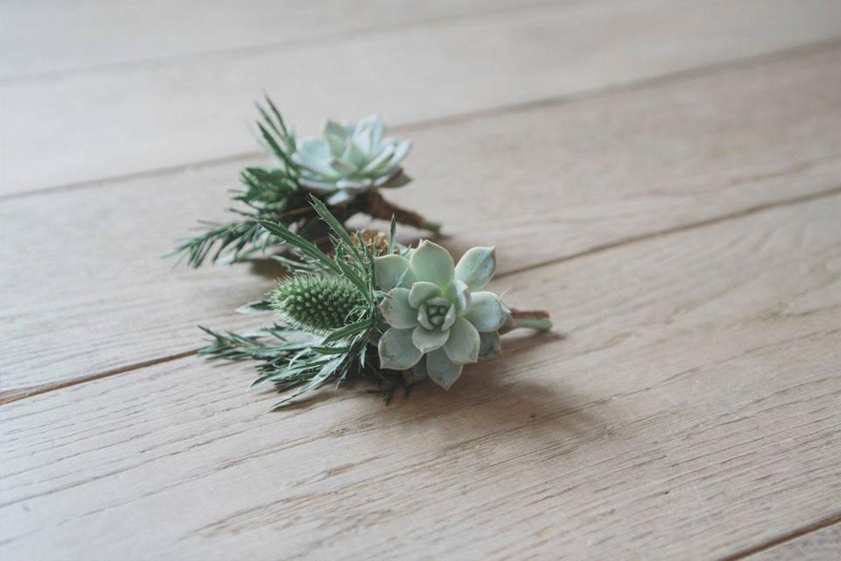 Thistle and succulent buttonholes by Jennifer Morrison Florist