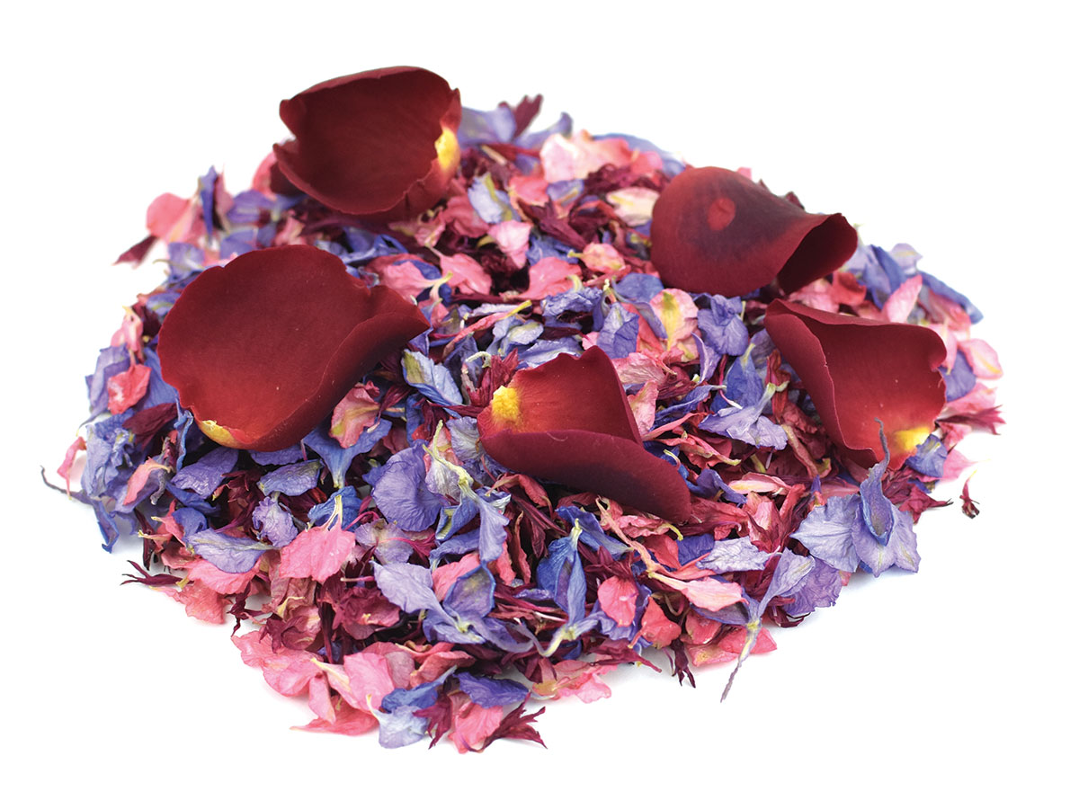 ShropshirePetals.com-Pick-and-Mix-of-Raspberry-Fool-Burgundy-Berry-Amethyst-and-Lady-in-Red-£15-per-litre
