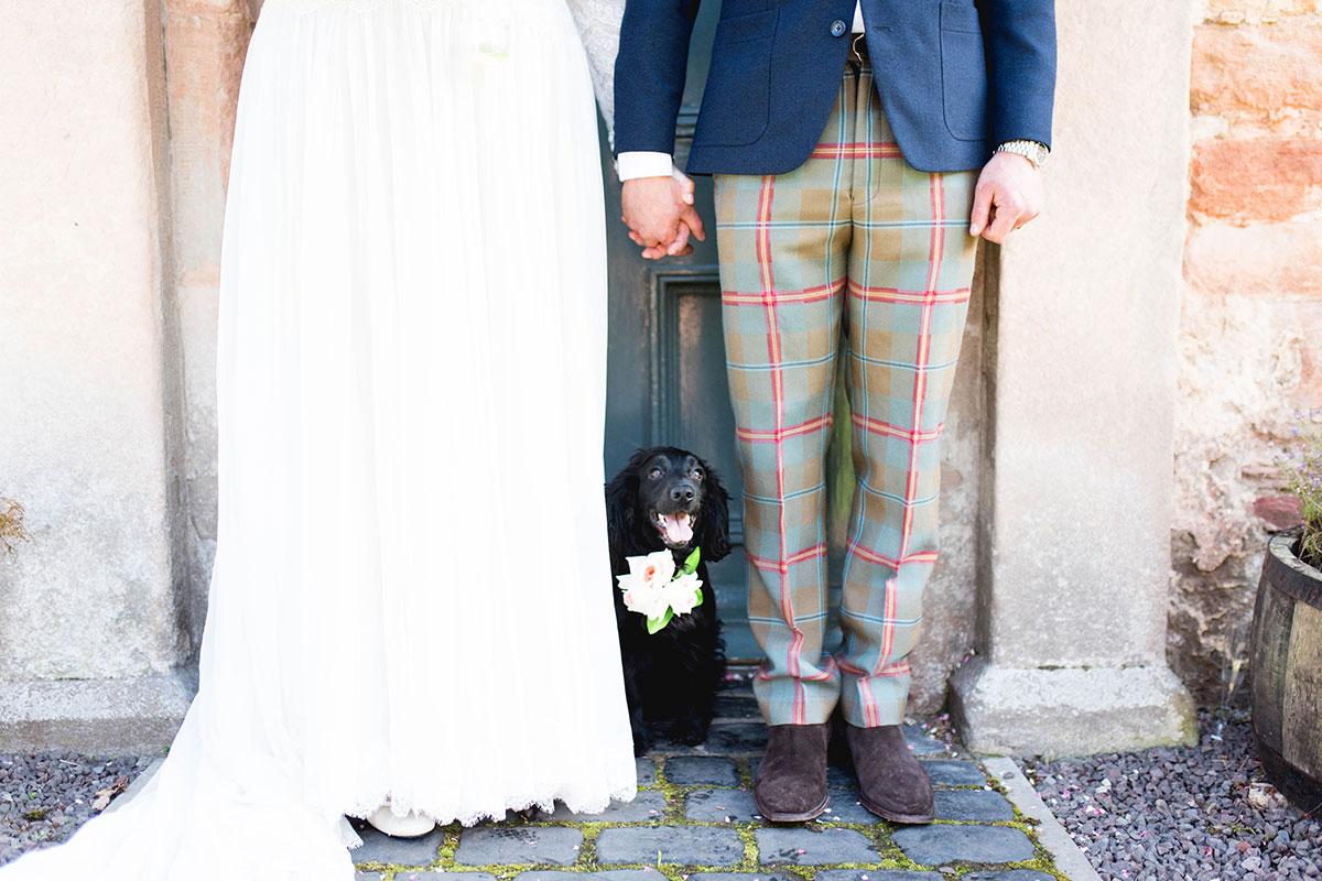 dog-standing-in-between-bride-and-groom