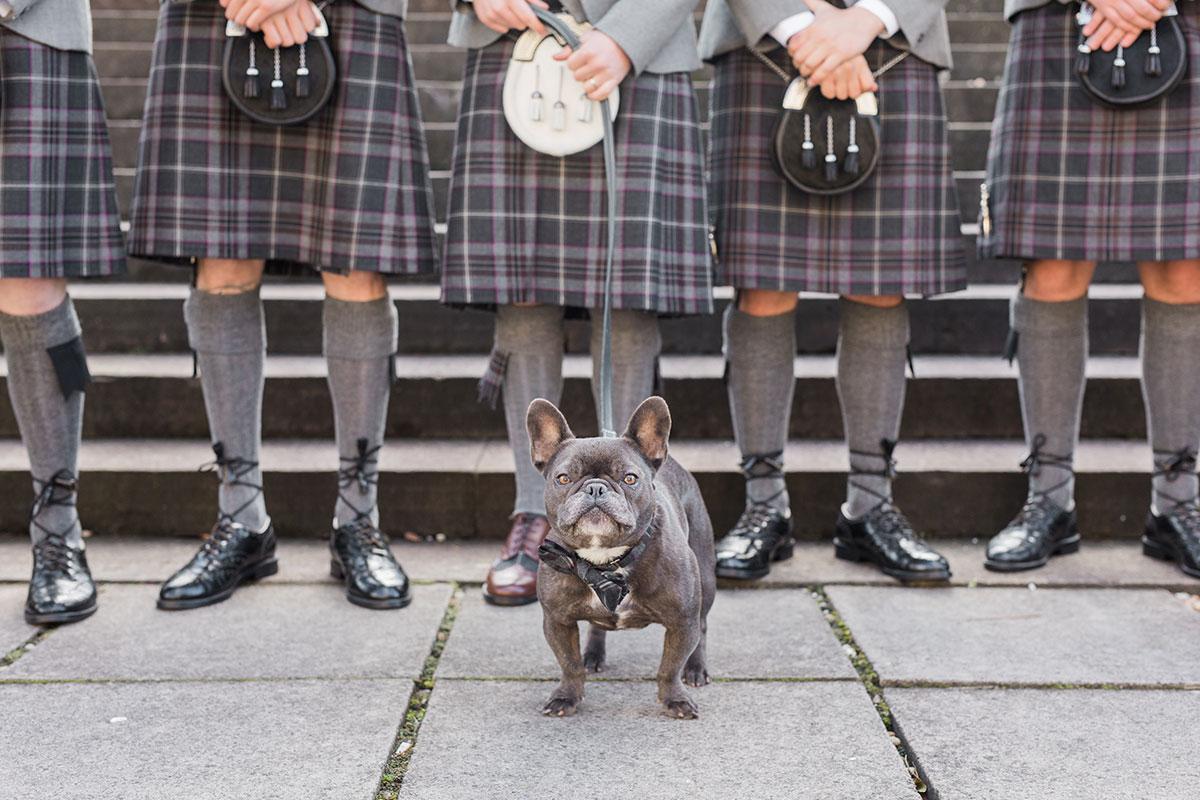 french-bulldog-in-front-of-groomsmen-in-kilts