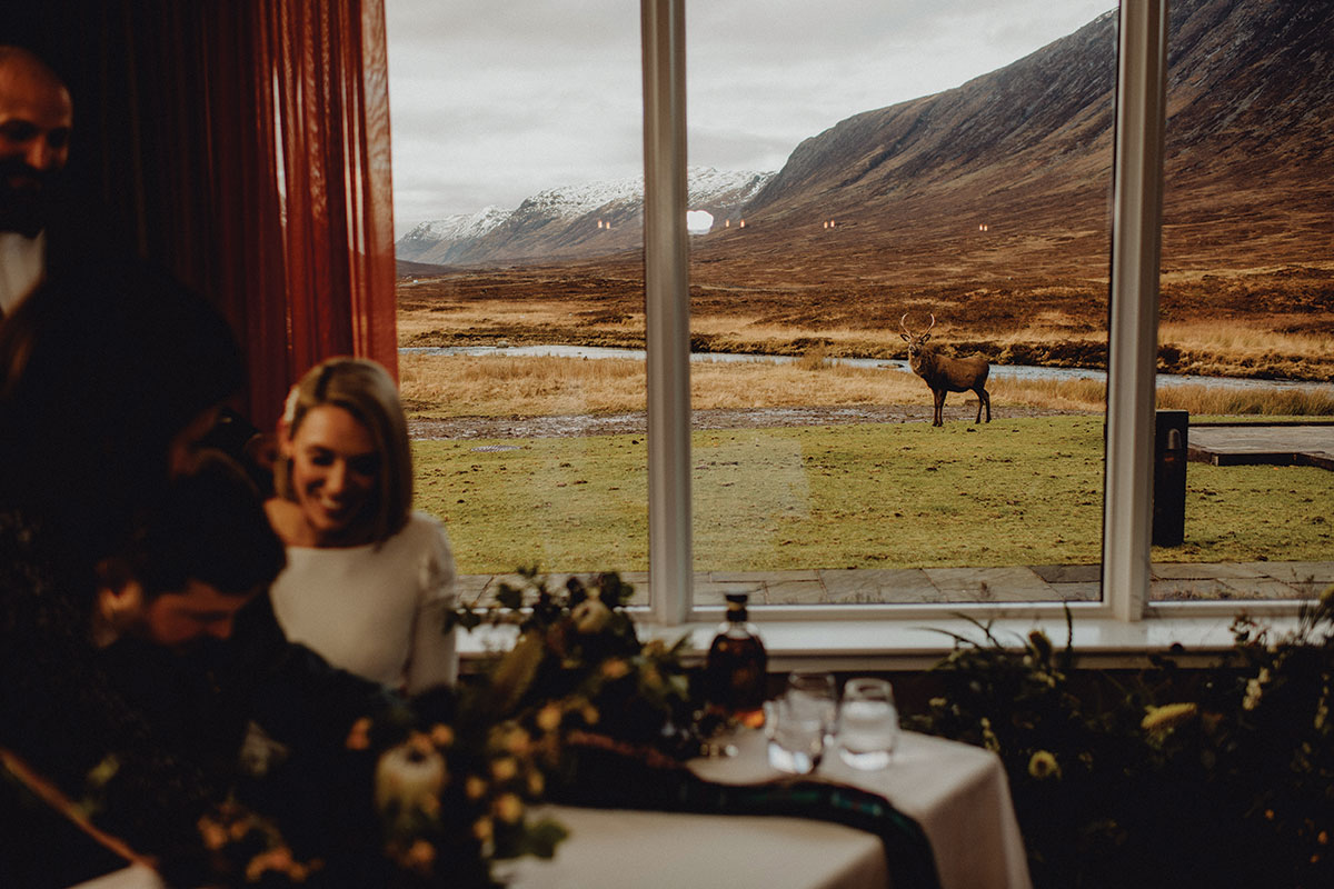 thekingshouse-hotel-with-hill-views-and-deer-outside