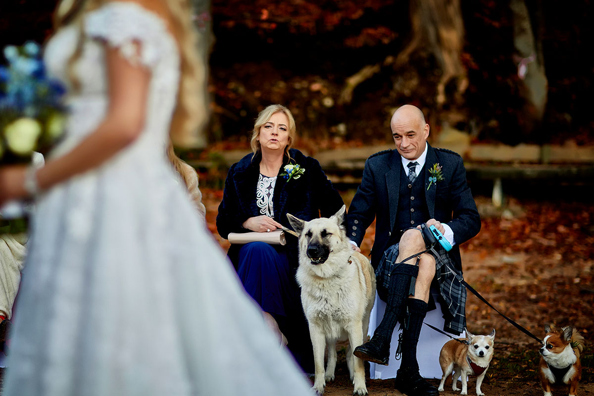 two wedding guests with three dogs and back of bride blurred out in foreground