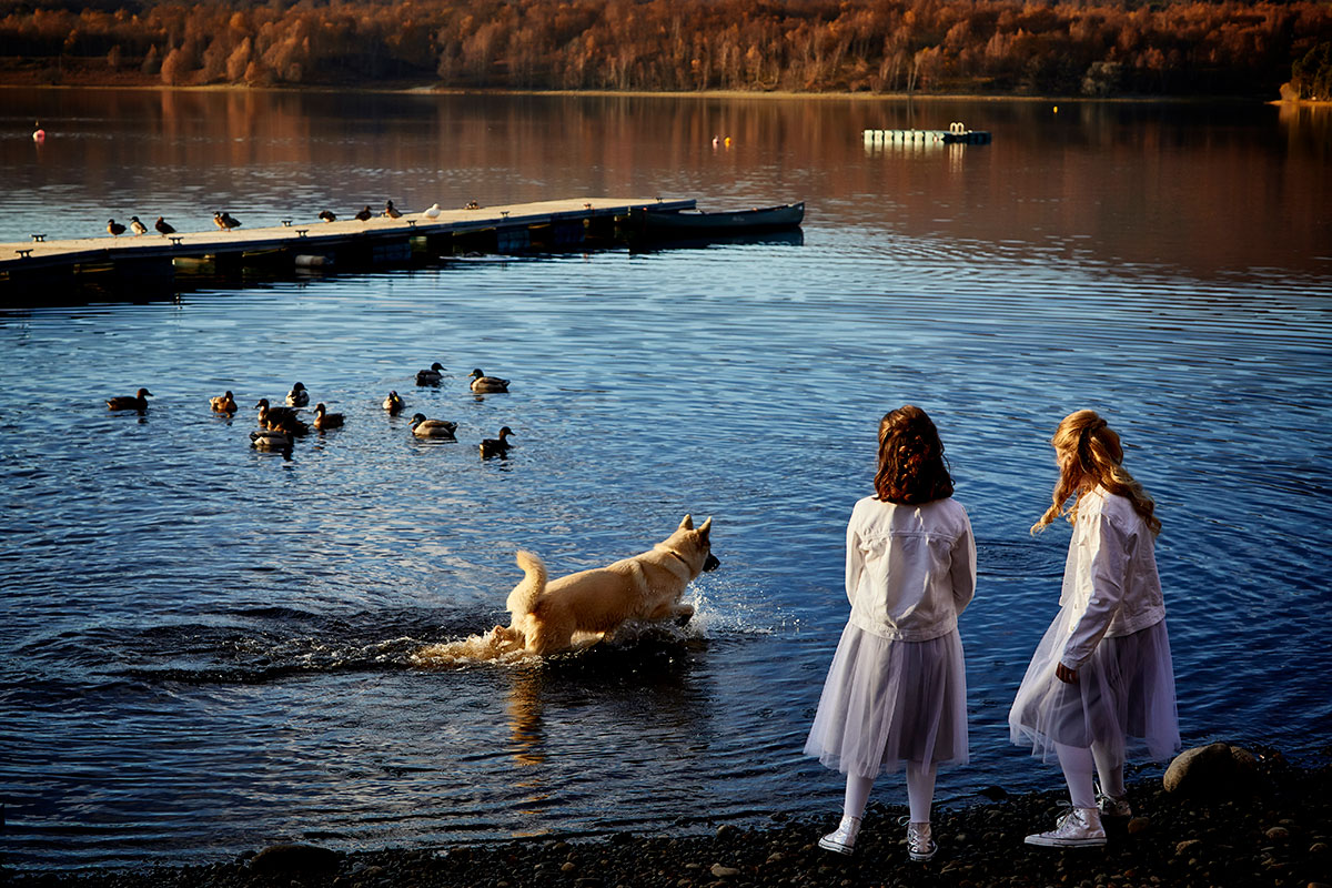 two young bridesmaids wearing white denim jackets and lilac tulle dresses watching a dog and ducks