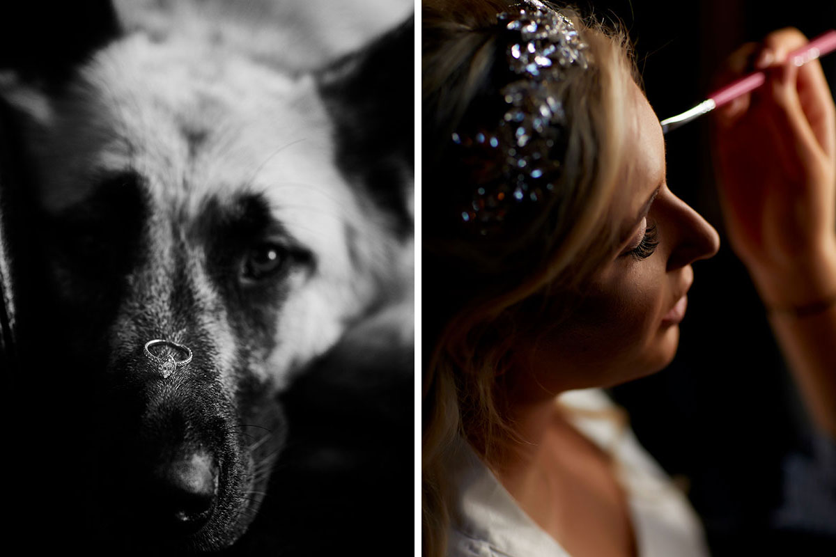 left image is a black and white picture of a dog with a wedding ring on its nose and right image is a bride getting her makeup done