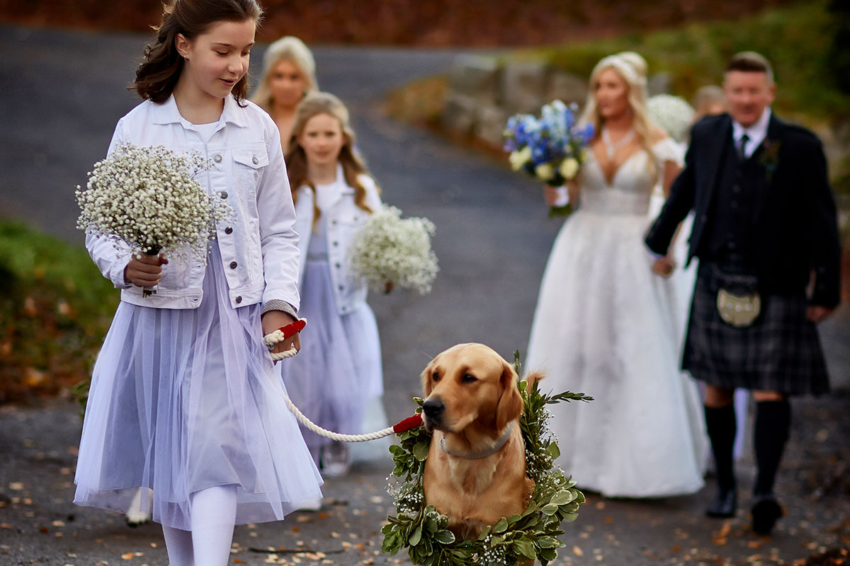bride and young bridesmaids walking along a road with dog wearing a green leaf dog collar